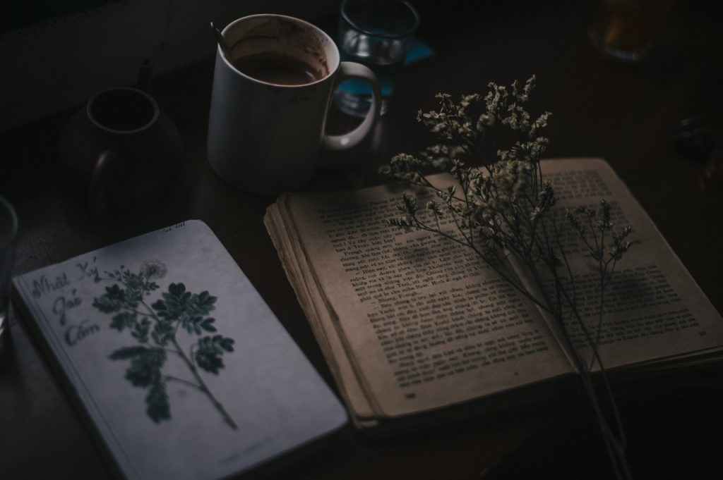 poesia terapia Uepa isolamento