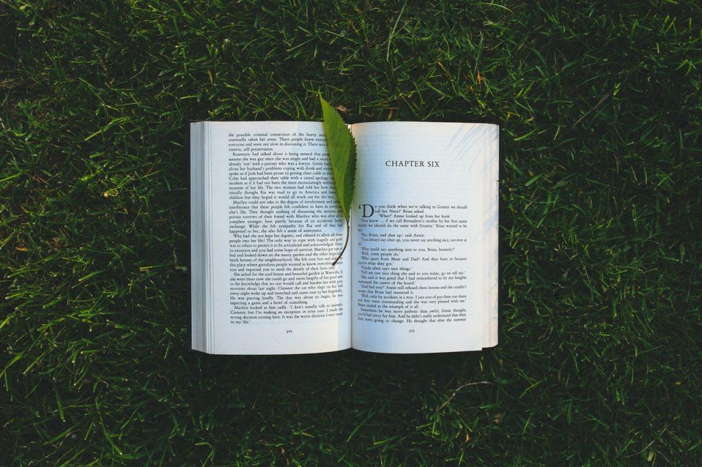Conheça o grupo Poesia & Prosa em casa