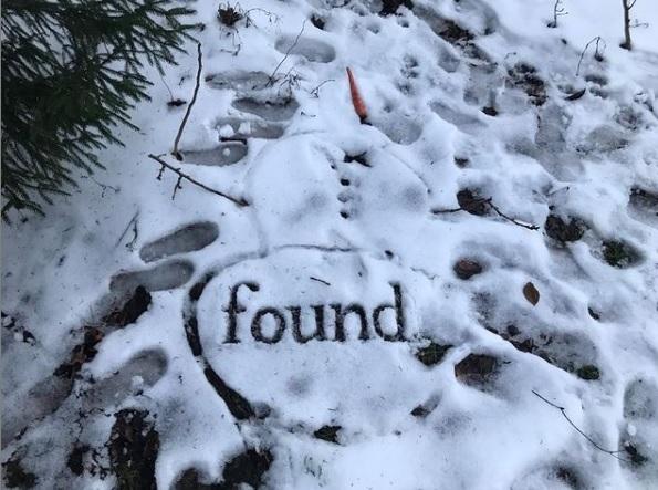 Escritora e ilustradora escreve na neve há sete anos para compor história