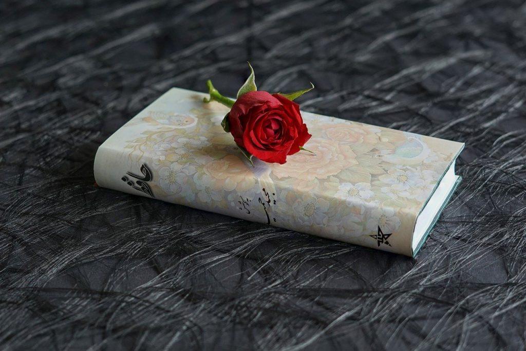 13 de maio é definido como Dia do Poeta e da Poesia em Juiz de Fora