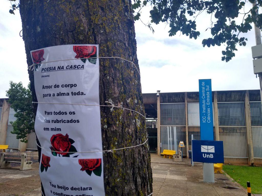 Lançamento de livro de poesias em árvores em Brasília