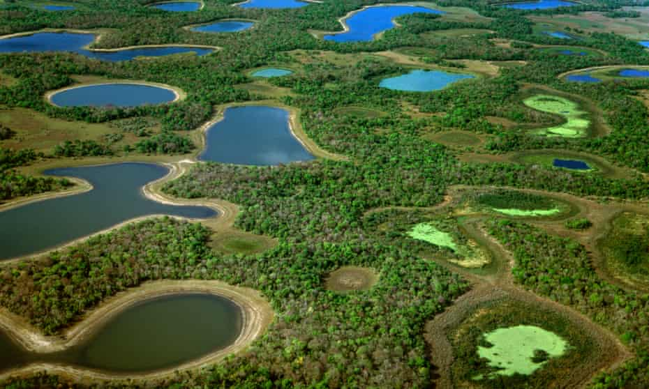 Professora publica livro de poesias em homenagem as belezas do pantanal