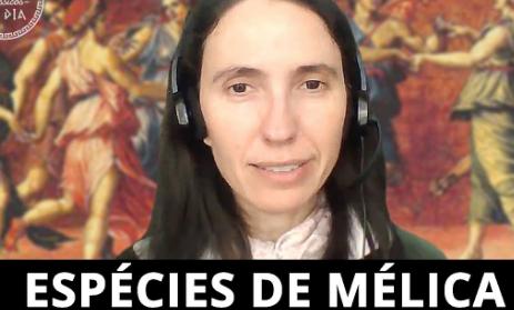 FFLCH publica vídeo sobre poesia mélica grega antiga